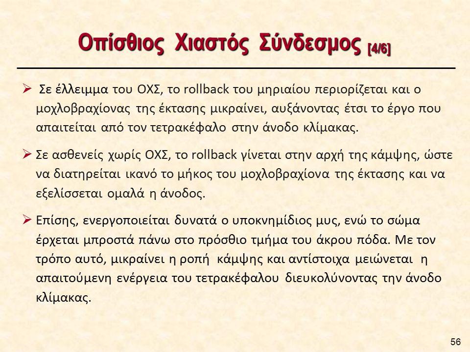 Οπίσθιος Χιαστός Σύνδεσμος [5/6]
